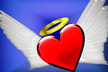 dobro srce
