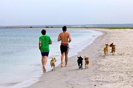trčanje uz more